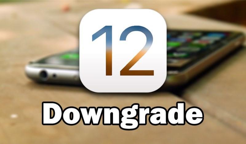 Hướng dẫn hướng dẫn hạ cấp iOS 12 về iOS 11 không mất data