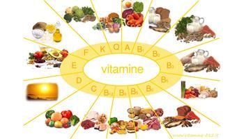 Phần mềm dinh dưỡng Nutri All
